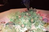 Anémone avec méduse