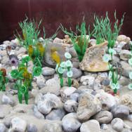 berck aquarium 6