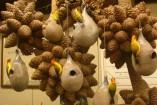 Pendulines