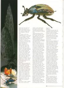 vetro magazine 2001 - 2