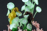 Seahorses swimming in the midst of algae on the bottom of the sea