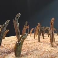 Anguilles de jardin - détail