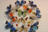 farfalle1-157x105